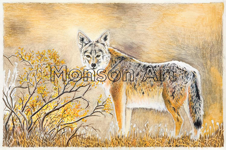Monson100324-02