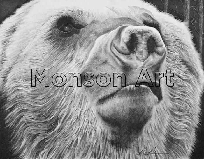 Monson110331-02