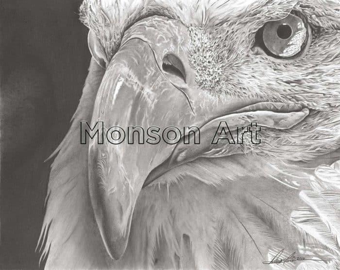 Monson160809-01