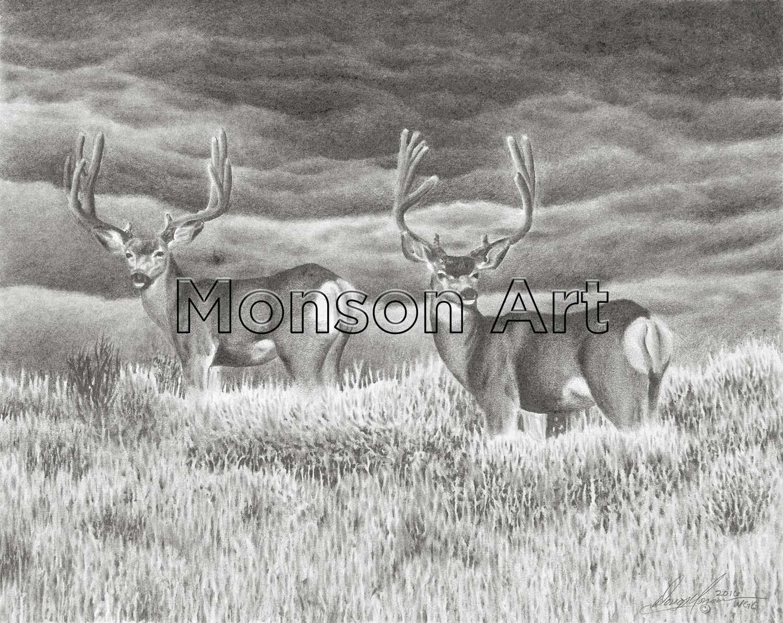 Monson161007-01