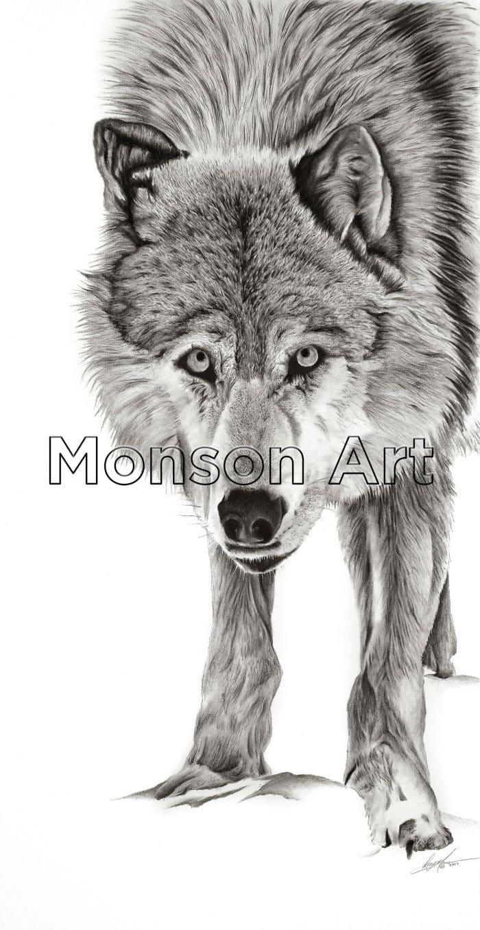 Monson170911-01 c