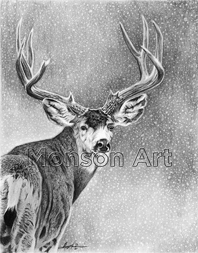 Monson190226-03 Snow Deer 11×14 web