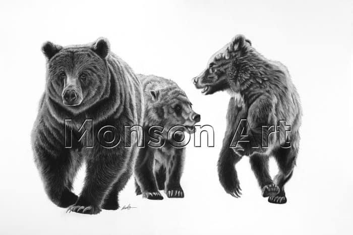 Monson190326-01 Queen of the Grizzlies 40×60