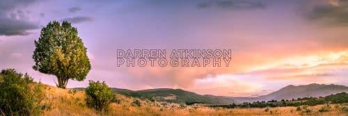 Darren Atkinson Photography