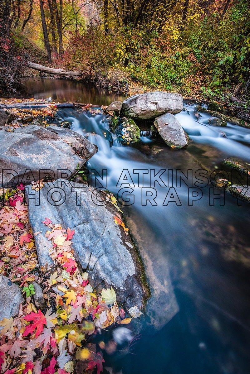 Hobble Creek 41 4